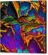 Orange Spice Acrylic Print