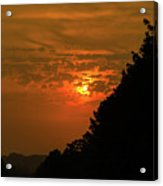 Orange Sunset With Tree Silhouette Acrylic Print
