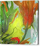 Orange Tulip Acrylic Print