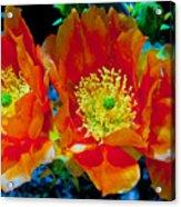Orange3 Acrylic Print