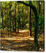 Orangedale Path Acrylic Print