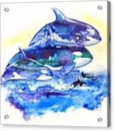 Orca Fantasy Acrylic Print