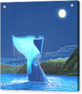 Orca Fluke Acrylic Print