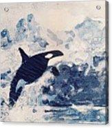 Orca Glacier Acrylic Print