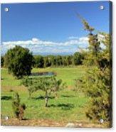 Orchard 1 H Acrylic Print