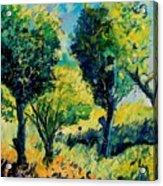 Orchard 562 Acrylic Print