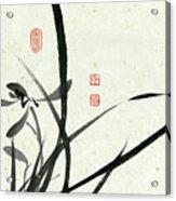 Orchid - 29 Acrylic Print
