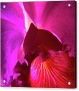 Orchid Landscape Acrylic Print