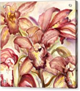 Orchid Medley Acrylic Print