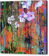 Orchid O Acrylic Print