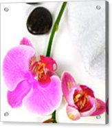 Orchid Spa Composition Acrylic Print