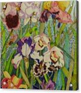 Orchids And Irises II  Acrylic Print