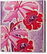 Orchids Of Orleans France 1967 Acrylic Print