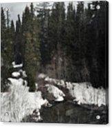 Oregon Cascade Range River Acrylic Print