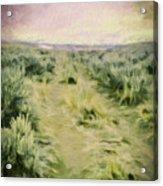 Oregon Trail 2 Acrylic Print