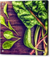 Organic Rainbow Chard Acrylic Print