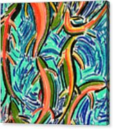 Orgy Oncorynchus Acrylic Print