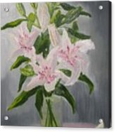 Oriental Lilies In White And Pink Acrylic Print