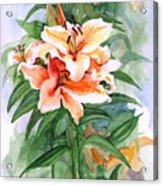 Oriental Lilies Acrylic Print