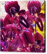 Oriental Orchid Garden Acrylic Print
