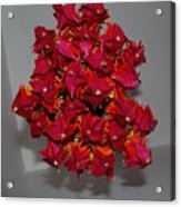 Origami Flowers Acrylic Print