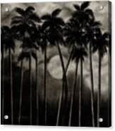 Original Moonlit Palm Trees  Acrylic Print
