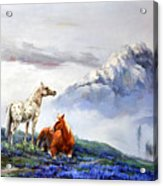 Original Oil Painting On Canvas Two Horses Acrylic Print