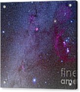 Orion And Canis Major Showing Dog Stars Acrylic Print