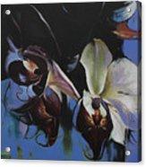 Orkidoo Acrylic Print