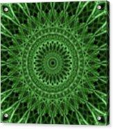 Ornamented Mandala In Green Tones Acrylic Print