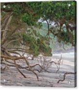 Orokawa Bay Acrylic Print