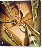 Os1980dc006 Celestial Globe No.6 24x28.25 Acrylic Print