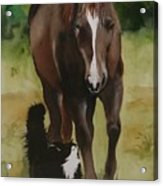 Oscar And Friend Acrylic Print