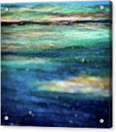 Osprey Reef Acrylic Print