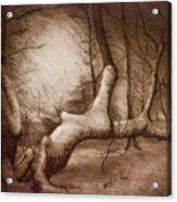 Otsiningo Park Binghamton Ny Acrylic Print
