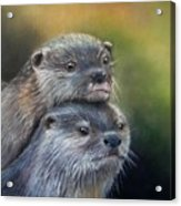 Otter Be Two Acrylic Print