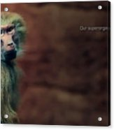 Our Superorganismal Features Acrylic Print