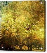 Our Town In Autumn Acrylic Print