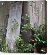 Out Back Acrylic Print by Angi Parks