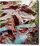 Outcrop At Wildcat Den Acrylic Print by Jame Hayes