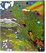 Over The Edge Acrylic Print