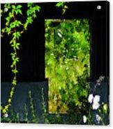 Overgrown Acrylic Print