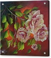 Overhanging Roses Acrylic Print