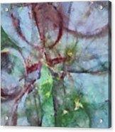 Overwages Tissue  Id 16097-225936-10390 Acrylic Print