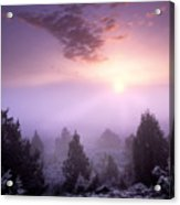 Owhyee Canyonlands Acrylic Print