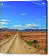 Owhyee Desert Acrylic Print