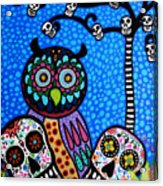 Owl And Sugar Day Of The Dead Acrylic Print by Pristine Cartera Turkus
