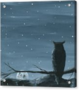 Owl And The Moon Acrylic Print