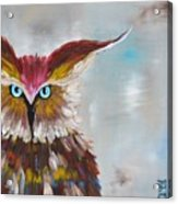 Owl Acrylic Print by Holly Donohoe