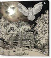 Owl In The Moonlight On Brush Mountain Acrylic Print